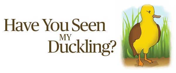 have-you-seen-duckling